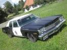 1974 Dodge Monaco Sedan_23