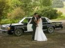 Hochzeit Bluesmobile_7