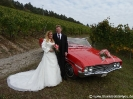 Hochzeitsauto Buick Skylark_3